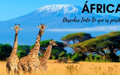 África, descubre todo lo que es posible.