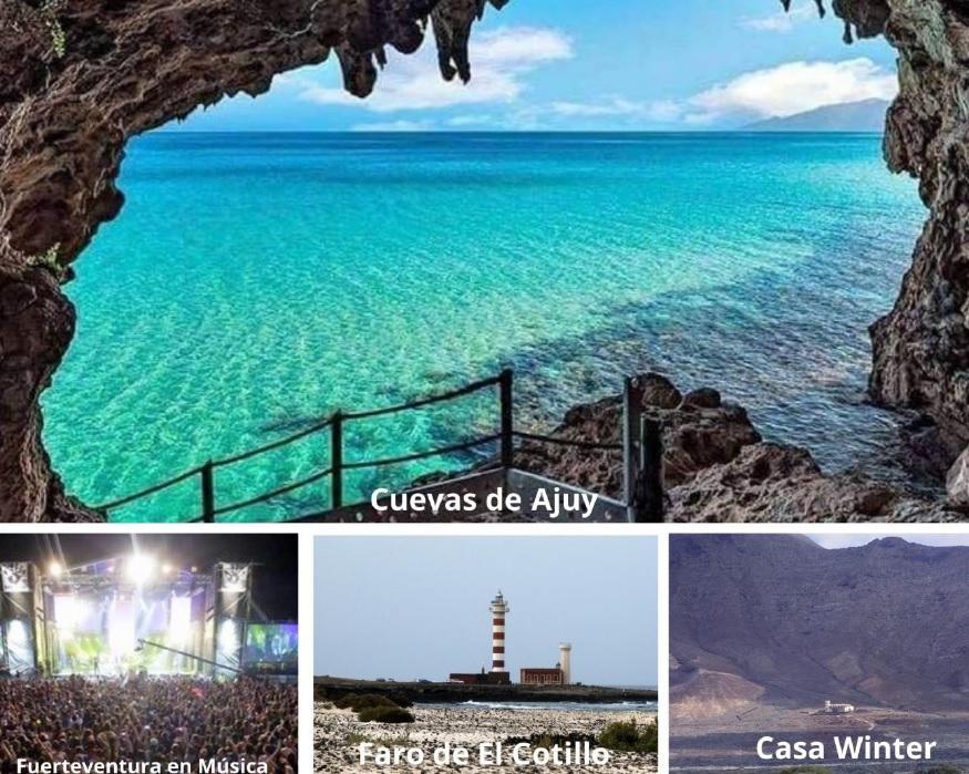 Fuerteventura en estado puro